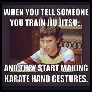 karate bjj meme